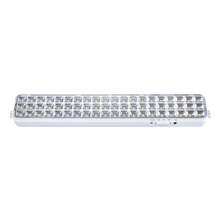 Светильник сд ав СБА 1098-60DC 60 LED 2.0Ah lithium battery DC IN HOME